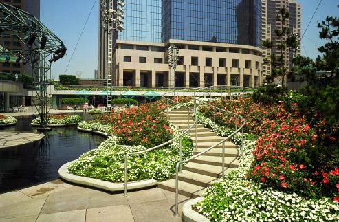 California Plaza - American Landscape, Inc.